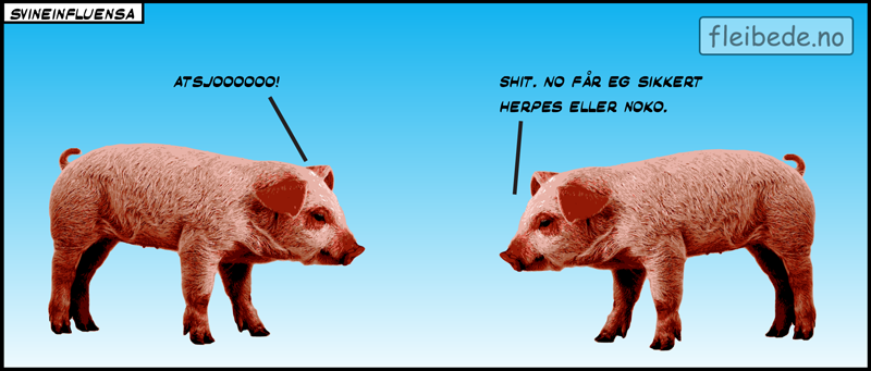 svineinfluensa_web